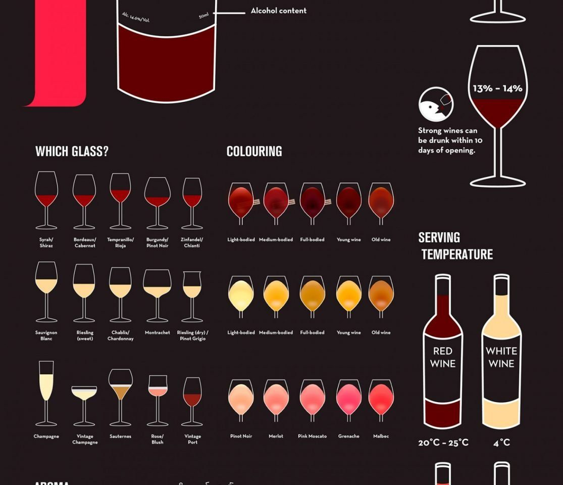 A Beginner's Guide to Wine #InfoGraphic