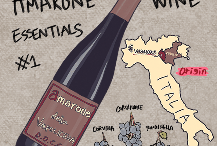 The Beginner's Guide to Amarone Wine